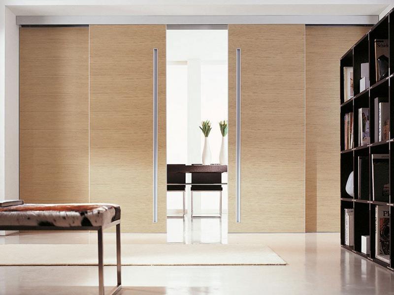Скрытые двустворчатые двери что это такое и в чем отличия от обычных.